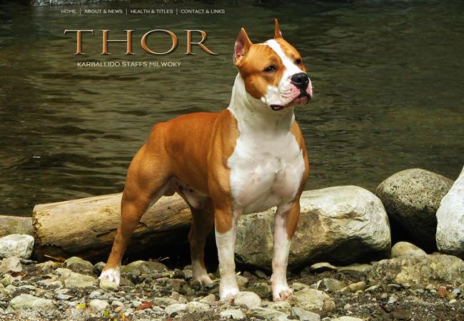 thor[1]